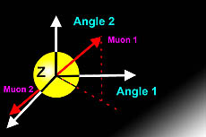 Z Boson and 2 muons